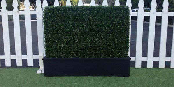 rental-hedge